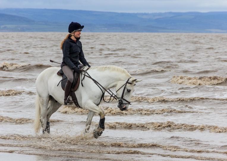 Horse Riding at Burnham on Sea